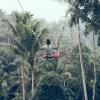 Schommelen in de jungle