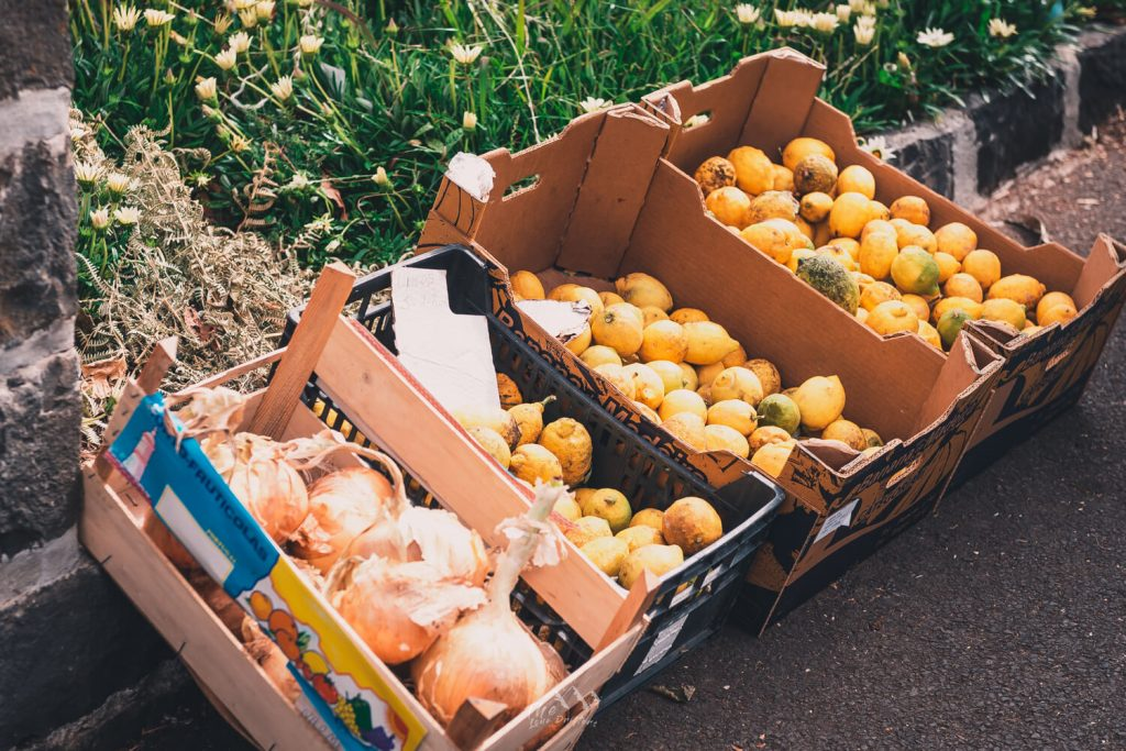 Fruit op Madeira