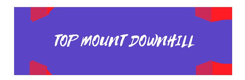 Longboards_Top mount downhill