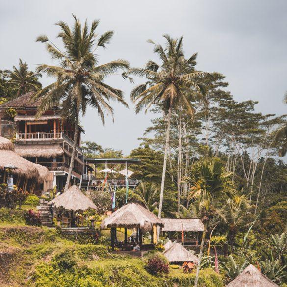 Tegallalang rijstvelden Ubud