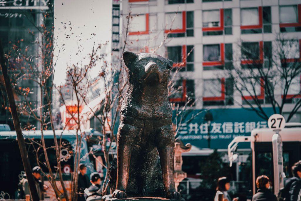 Bezoek Hachiko - van de gelijknamige film - in Tokyo, een van de bezienswaardigheden van Tokyo.