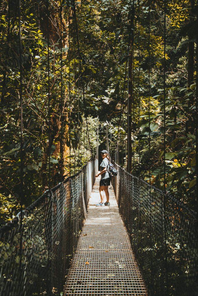 Hangbruggen Costa Rica jungle