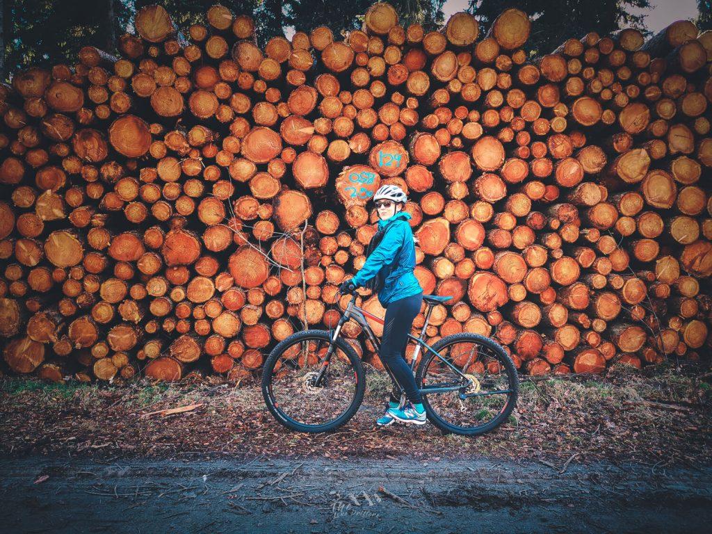 Mountainbike bij omgekapte bomen