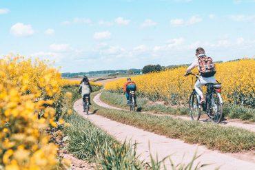 fietsen door bloemenvelden wallonie
