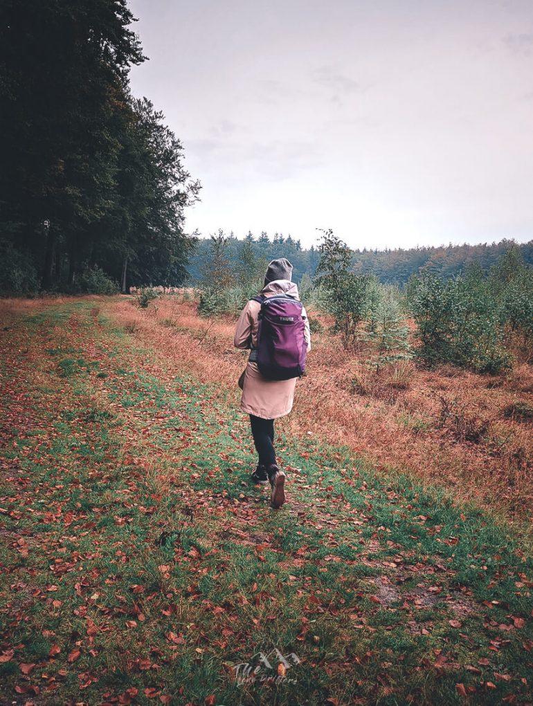 Trekking door Drentse Natuur