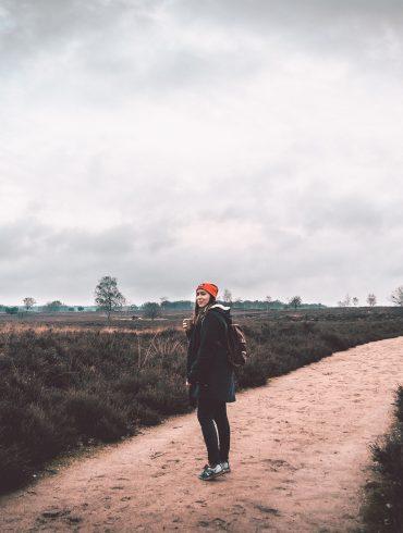 Wandelaar op de Ermelose heide