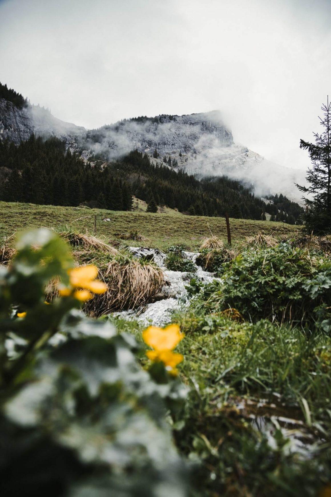 De Mooiste Streken Van Frankrijk Lone Drifters
